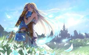 Picture sword, game, ken, blade, vegetation, Zelda, The Legend Of Zelda: Breath Of The Wild, The …