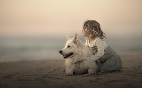 Picture sand, dog, girl, friends, bokeh, The white Swiss shepherd dog