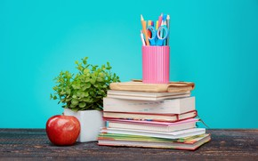 Picture table, background, red, plant, books, Apple, pencils, notebook, scissors