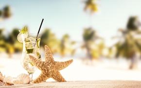 Picture sand, sea, beach, summer, the sun, shell, summer, beach, vacation, sand, mojito, slates, vacation, starfish, …