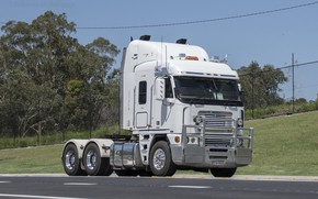 Picture White, Freightliner, Road, Argosy