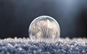 Picture cold, macro, pattern, frosty pattern, bubble