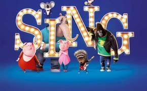 Picture cinema, movie, animal, gorilla, film, animated film, animated movie, Sing