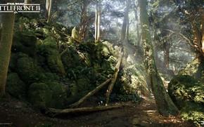 Picture forest, nature, stones, Star Wars Battlefront 2, Mazs Castle Forest