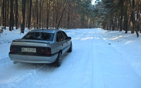 Picture winter, forest, trees, Opel, vectraa, Vectra