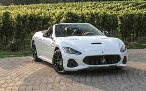 Picture auto, Maserati, white, convertible, luxury, GranCabrio, metallic
