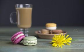 Picture flowers, coffee, cookies, desert, sweet, macaron, macaroon