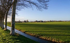 Picture field, the sky, grass, the sun, trees, channel, houses, Netherlands, Oudendijk