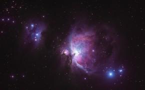 Picture stars, nebula, Orion Nebula