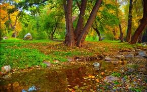 Picture Autumn, Trees, Stream, Park, Fall, Foliage, Park, Autumn, Colors, Trees, Leaves
