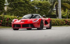 Picture Ferrari, Beautiful, Scuderia, Italia, RED, LaFerrari