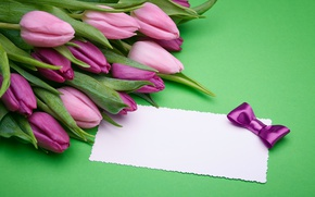Wallpaper fresh, pink, love, bow, gift, pink, romantic, tulips, tulips, purple, bouquet, gifts, flowers