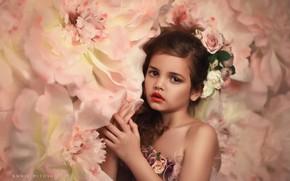 Picture look, flowers, hands, girl, wreath, Annie Mitova