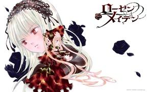 Picture doll, red eyes, long hair, art, Suigintou, Rozen maiden, Rozen Maiden, drape, Kapor, Shinku, peach-pit, …
