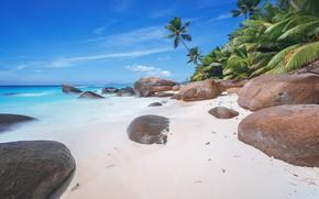 Picture sand, beach, summer, nature, tropics, stones, coast
