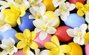 Wallpaper spring, Easter, grass, eggs, Easter, weed, spring, holiday, flowers, holiday, eggs, flowers