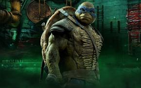 Picture cinema, TMNT, Leonardo, movie, Teenage Mutant Ninja Turtles, ninja, hero, film, shinobi, yuusha, bysachso74