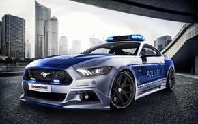 Picture Mustang, Ford, Mustang, Ford, Safety Car