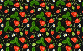 Picture berries, strawberry, flowers