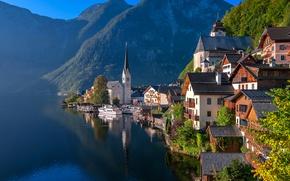 Picture forest, trees, mountains, lake, rocks, home, Austria, Sunny, Hallstatt