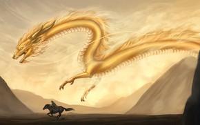 Picture animal, mountains, art, rider, sand, dragon, fantasy, yellow, horse, flies