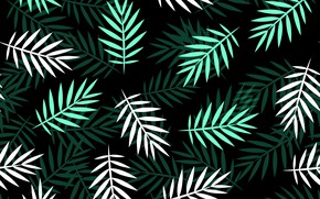 Picture green, texture, white, pattern, leaves