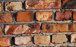 Picture wall, texture, bricks, brick wall