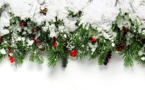 Picture winter, snow, decoration, berries, tree, New Year, Christmas, happy, Christmas, winter, snow, New Year, Merry …