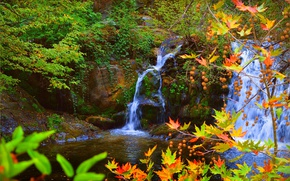 Picture Waterfall, Autumn, Leaves, Stones, Fall, Autumn, Waterfall, Colors, Leaves