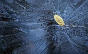 Wallpaper nature, ice, sheet