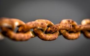 Picture macro, rust, chain