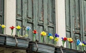 Picture Italy, Venice, shutters, glass flowers, the island of Murano