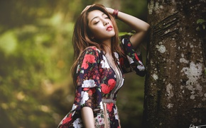 Picture girl, face, pose, tree, East