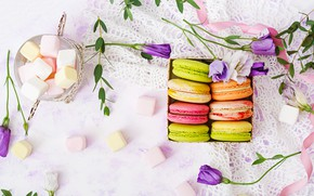 Picture flowers, colorful, dessert, pink, flowers, cakes, sweet, sweet, dessert, macaroon, french, macaron, macaroon, marshmallow, marshmallows