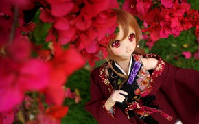 Picture flowers, toy, Japanese, doll, anime