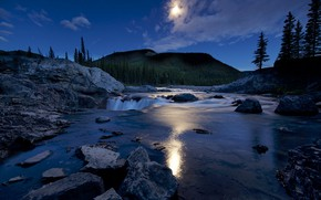 Picture trees, landscape, mountains, river, stones, the evening