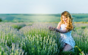 Picture field, girl, flowers, nature, lavender