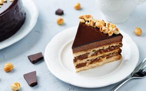 Picture chocolate, cake, nuts, cream, dessert