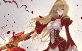 Wallpaper the saber, girl, petals, Fate / Grand Order