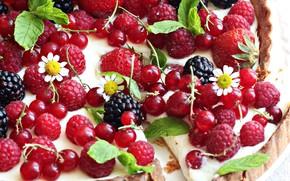 Picture berries, raspberry, pie, currants, BlackBerry