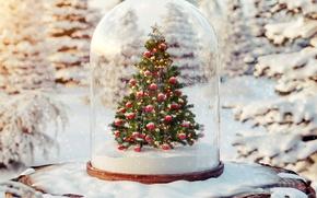 Wallpaper balls, snow, tree, tree, winter, snow, merry christmas, christmas tree