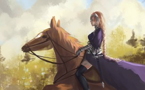 Picture horse, anime, art, fate/grand order, fate/apocrypha
