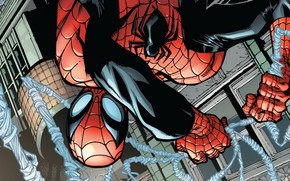 Picture Web, Costume, Hero, Mask, Comic, Superhero, Hero, Web, Marvel, Spider-man, Comics, Spider-Man, Peter Parker, Peter …
