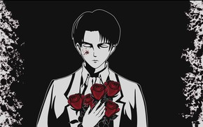 Picture art, guy, Shingeki no Kyojin, Attack Of The Titans, Levi