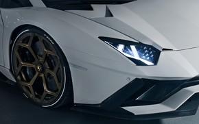 Picture Lamborghini, headlight, wheel, supercar, 2018, the front part, Novitec Torado, Aventador S