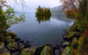 Picture trees, mountains, fog, stones, island, Seidozero