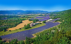Picture the sky, the sun, trees, mountains, France, field, panorama, houses, forest, lavender, Valensole
