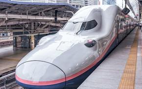 Picture Japan, train, E4 Series Shinkansen