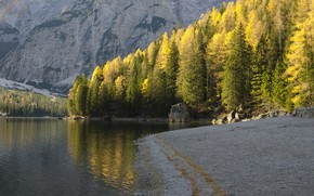 Wallpaper autumn, trees, river, mountains, nature