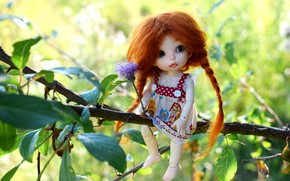 Picture girl, branch, doll, braids, red